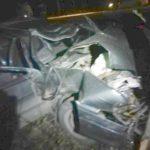 На трассе в Кировской области водитель ВАЗа сбил лося: три человека госпитализированы, животное погибло