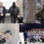 Итоги недели: первое задержание по делу парка Победы, нападение медведя и новые технологии в медицине Кировской области
