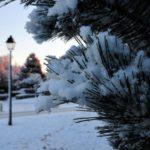 Сегодня в Кировской области временно потеплеет