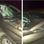 В Яранском районе «Лада Веста» сбила пешехода: 39-летний мужчина погиб на месте