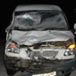В Санчурском районе водитель «Газели» сбил лося