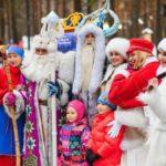 Девица Метелица из Вятских Полян заняла золотую середину рейтинга самых популярных сказочных персонажей