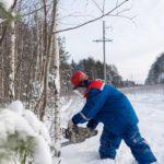 В 2018 году филиал «Кировэнерго» организовал расчистку и расширение свыше 3,5 тыс. гектаров трасс под воздушными линиями электропередачи