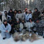 В Котельничском районе ликвидирована стая волков