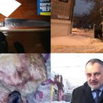Итоги недели: снежный «апокалипсис», кровавые драмы с людьми и животными и сбор валежника в «неограниченных объемах»