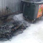 Кировчане ломают и поджигают мусорные контейнеры