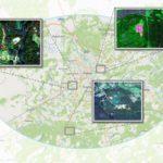 Выявить нарушения в сфере лесного хозяйства и экологии в Кировской области помогают спутники
