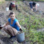 Жительницам сельской местности хотят увеличить продолжительность рабочего дня
