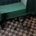 В Кирово-Чепецке мужчина сгорел в подъезде