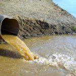 17 предприятий Кировской области не возмещали вред, который наносили водным биологическим ресурсам