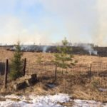 В Кирове в десятках метров от домов горит трава