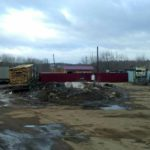 В Кирове опять незаконно сжигают трупы животных
