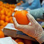 В Киров завезли почти 3 тонны мандаринов с опасными насекомыми