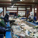 В Кировской области создадут 6 мусоросортировочных станций в 2020 году