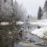 В Советске расследуется уголовное дело по факту сброса канализационных стоков в реку
