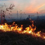 В Кировской области зарегистрировано первое возгорание сухой травы в сезоне