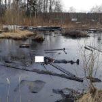 В Яранске в «мазутном» озере утонул пенсионер