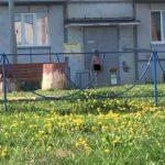 В Кирово-Чепецке по улицам гуляет абсолютно голая девушка