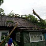 В Кировской области устраняют последствия ночной грозы