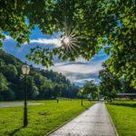 Синоптики рассказали, каким будет июнь в Кировской области