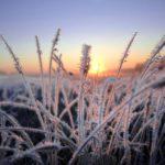 Очередное метеопредупреждение: в Кировской области ожидают заморозки до -4°С