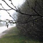 Очередное метеопредупреждение: в Кировской области ожидают дожди и ветер