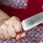 В Кирове мать порезала ножом своего сына в «воспитательных» целях