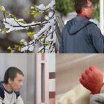 Итоги недели: тело младенца в Зубаревском лесу, приговор пьяному водителю и резкое похолодание в Кировской области