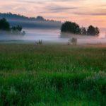 Рабочая неделя в Кировской области будет прохладной, но в выходные прогнозируют потепление