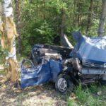 В Верхнекамском районе погиб водитель автомобиля, врезавшись в дерево в кювете