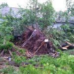 Из-за последствий грозы несколько поселений в Кировской области остаются без электричества