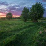 В выходные в Кировской области ожидается прохладная погода и дожди