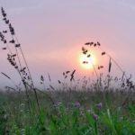 На рабочей неделе в Кировской области ожидается относительное похолодание