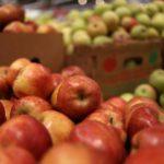 В Кирове уничтожили 315 кг яблок из Польши