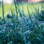 Синоптики-любители: В Кировской области ожидается резкое похолодание, возможны заморозки до -1С°