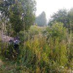В Санчурском районе в ДТП погиб 26-летний мужчина, еще три человека госпитализированы
