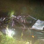 В Юрьянском районе «Лада Приора» сбила на трассе лося: пострадали 4 человека, в том числе двое детей