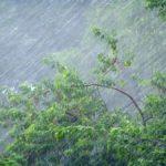 МЧС объявило метеопредупреждение: в Кировской области ожидается сильный ливень
