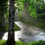 Жителей Кировской области ждут дождливые выходные