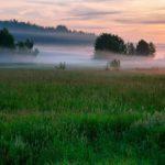 В Кировской области ожидается похолодание до 10°С
