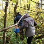 В Верхнекамском районе гражданские супруги три дня блуждали по лесу