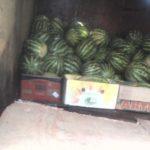 В Кирове мужчина торговал дынями и арбузами не прошедшими фитосанитарный контроль