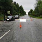В Омутнинском районе водитель «Фольксвагена» насмерть сбил 67-летнего мужчину
