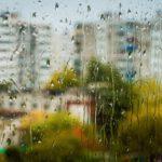 Синоптики обещают теплую, но дождливую неделю в Кировской области