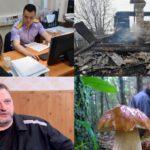 Итоги недели: убийство кировчанкой своего 2-летнего сына, суд над пижанским поджигателем и начало активного грибного сезона
