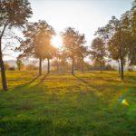 После сильных дождей в Кировской области ожидается короткое потепление