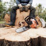 В Шабалинском районе возбуждено уголовное дело по факту незаконной рубки леса
