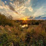 После холода и заморозков в Кировскую область вернется волна летнего тепла