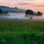 Жителей Кировской области ожидают прохладные выходные