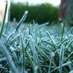 Синоптики-любители: В Кировской области возможны заморозки до -1°С